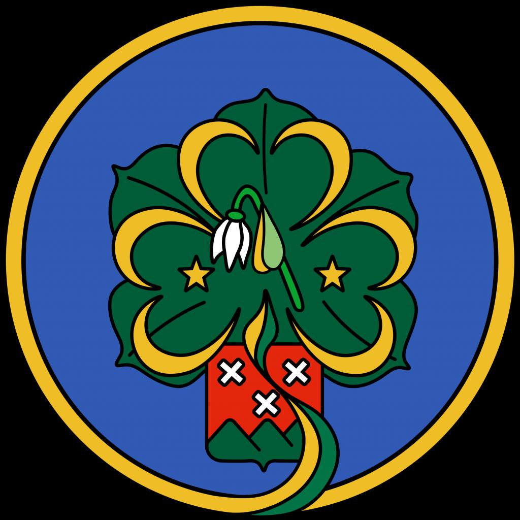 Logo Scouting Delmo